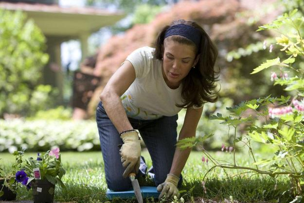 Effect of Gardening on Your Mental and Physical Health