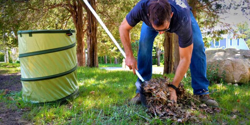 maintaining your yard