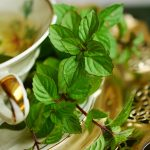 Peppermint Tea Benefits, Side Effects, Uses, and More