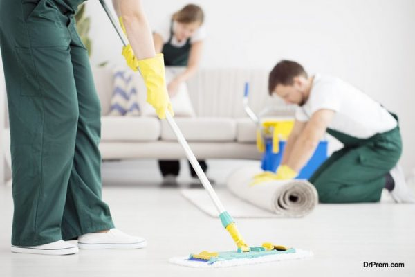 professional house cleaner