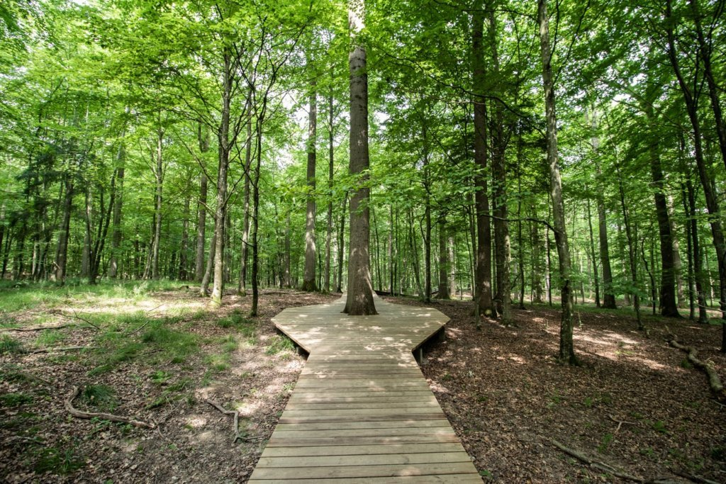 nature trails near me
